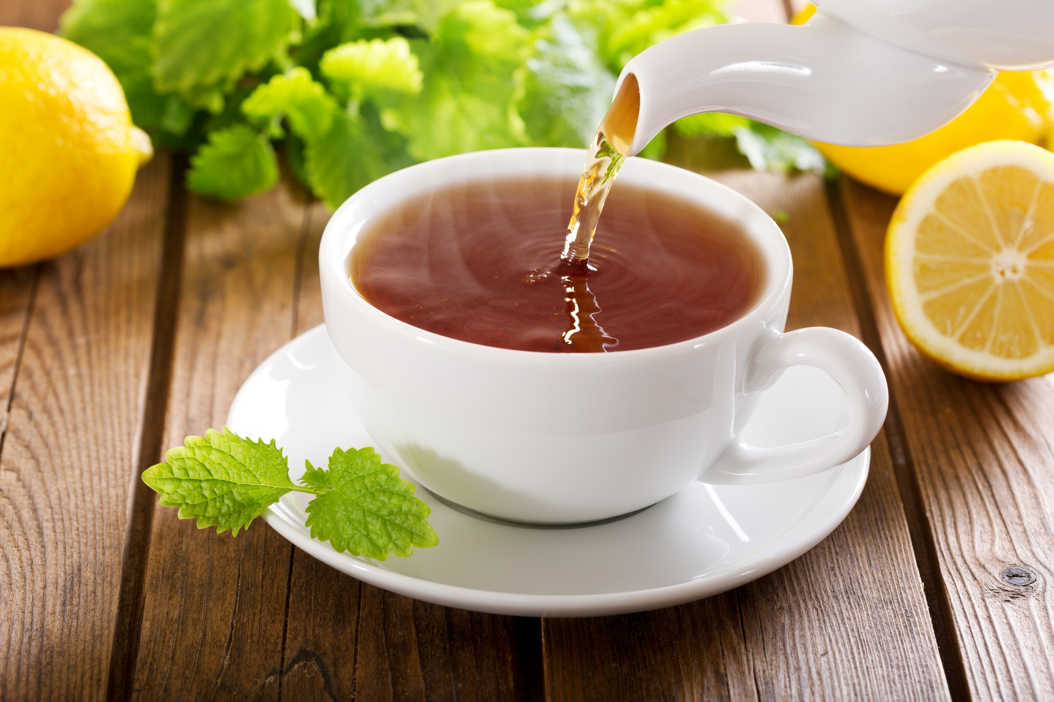Caffeinated Tea Options in South Shore